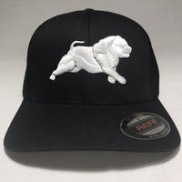 BULLY BREED CLOTHING  CAP