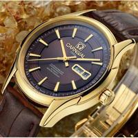 CARNIVAL メンズ腕時計 機械式 自動巻き 自動日付 防水 発光  高級腕時計