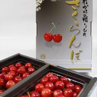 佐藤錦 1kg化粧箱(手詰め500g × 2パック)L~2L