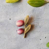sunawo na katachi      ブローチ olive  color    SN-31
