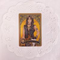 ディズニー ツイステッドワンダーランド メタルカードコレクション パックver. P1-01 レオナ・キングスカラー