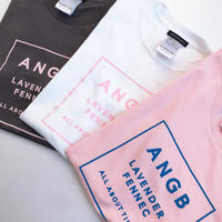 <ANDGEEBEE>ボックスロゴT AG192CS29