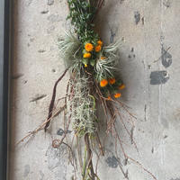 ドライフラワー 多肉植物 エアープランツ プレゼント 誕生日プレゼント インテリア 引っ越し祝い 贈り物 おしゃれ オシャレ