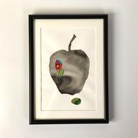 『林檎の』