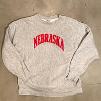 "Champion reverse weave (tricolor tag) ""NEBRASKA"" / size L / made in USA"