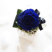 """BIRTHDAY JEWELY  """"Sapphire""""  9月の誕生石【サファイア】をイメージしたバースデーフラワー"""