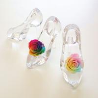 "Cinderella ""Dear・・・"" レインボーローズが彩るシンデレラのガラスの靴"