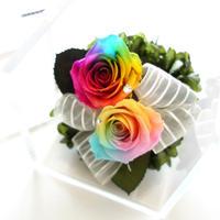 """RAINBOW ROSE """"Le futur"""" ☆奇跡のバラ☆レインボーローズ2輪の贅沢なフラワーボックス"""