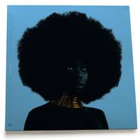 (LP) SUDAN ARCHIVES / sink  <HIPHOP / R&B>