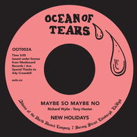 "(7"") NEW HOLIDAYS / maybe so maybe no   <soul>"