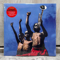 (2LP) COMMON / A Beautiful Revolution Pt.1 <hiphop / rap>