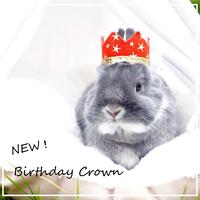 Birthday ★ Crown レッド