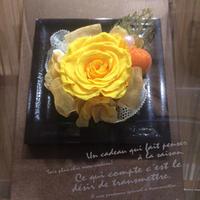 木製フレームアレンジS(アクリルケース入り)