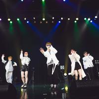 【期間限定販売】Tigh-Z Zepp Namba 8月の恋 ワンマンフォトセット 20枚 2L版+特典DVD-Rセット 08/24