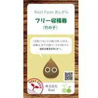 フリー収穫(竹の子):2019年4~5月