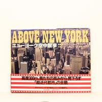 ABOVE NEW YORK ニューヨーク空中散歩