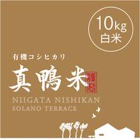 【R.元年度産】【白米 10kg】  『真鴨米』有機コシヒカリ 無農薬・無化学肥料