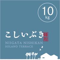 【R.2年度産】【玄米 10kg】  そら野テラスの『こしいぶき』