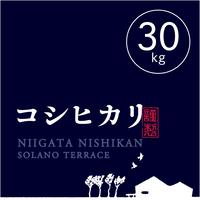 【R.2年度産】【玄米 30kg】そら野テラスの『コシヒカリ』