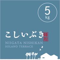 【R.2年度産】【玄米 5kg】  そら野テラスの『こしいぶき』
