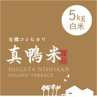 【R.元年度産 新米】【白米 5kg】  『真鴨米』有機コシヒカリ 無農薬・無化学肥料