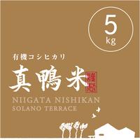 【R.2年度産】【白米 5kg】  『真鴨米』有機コシヒカリ 無農薬・無化学肥料