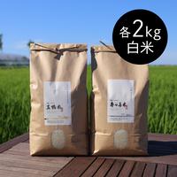 【R.2年度産】『コシヒカリ 金銀セット』 「真鴨米・寿々喜米」 白米 各2kg入