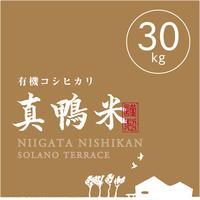 【R.2年度産】【玄米 30kg】  『真鴨米』有機コシヒカリ 無農薬・無化学肥料