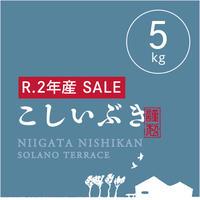 【SPECIAL  SALE!】【R.2年産】【白米 5kg】  そら野テラスの『こしいぶき』