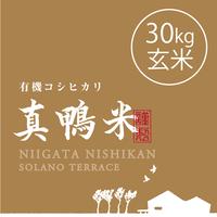 【R.元年度産】【玄米 30kg】  『真鴨米』有機コシヒカリ 無農薬・無化学肥料
