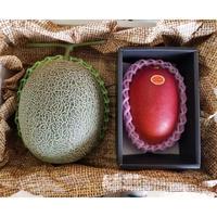 宮崎特産完熟マンゴ-4Lサイズ1玉と旬のメロンのセット