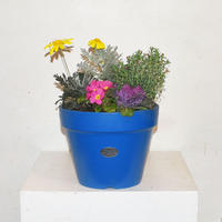 【ORDER】Spring Little Garden Pot
