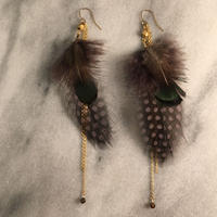 feather  pierce