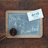 ditto BLEND No.0 [ 2016.4.23 Roasted ] - 200g -