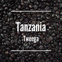 Tanzania Tweega [ 2016.5.21 Roasted ] - 200g -