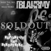 BLAHRMY / A REPORT OF BIRDSTRIKE [CD]