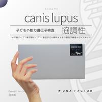 子どもの能力遺伝子検査/canis lupus/カニスループス(協調性)/全1遺伝子を解析