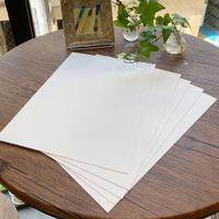 doArt 「あの紙」のA4サイズ5枚入 2101710018106