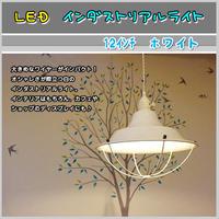 LED【12インチ インダストリアル】ライト《ホワイト》 ワイヤー  紐 照明 アルミ 天井 シーリング JR