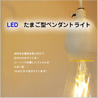 LED【たまご型 ペンダントライト】 ≪ホワイト≫ 白 エジソン型LED電球付き JR