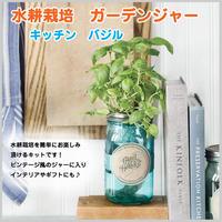 水耕栽培 バジル ガーデンジャー キッチン 瓶 贈り物 単品 簡単栽培 ガーデン  料理