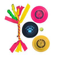 ドッグスポーツスターターキット『犬遊び初めの一歩』