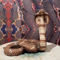 Vintage  King Cobra  Statue