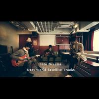 Into Dreams/*24bit48khz/Next World Satellite Tracks