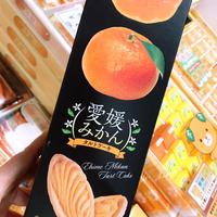愛媛みかんタルトケーキ(5個入り