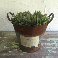 RUSTIC POTTED  COVER