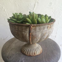 IRON   POTTED   GARDEN