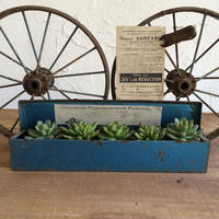 RUSTIC  BASIC  BLUE X GREEN