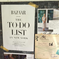 TO DO LIST IN NEW YORK