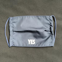 "🔴新発売 MKDN1 DRESSSEN  MASK""YES""  (NAVY COLOR)"